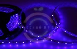 LED лента открытая, 8мм, IP23, SMD 3528, 60 LED/m, 12V, синяя