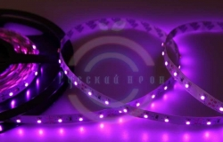LED лента открытая, 8мм, IP23, SMD 3528, 60 LED/m, 12V, розовая