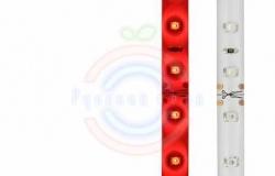 LED лента силикон, 8мм, IP65, SMD 3528, 60 LED/m, 12V, красная