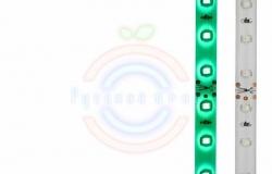 LED лента силикон, 8мм, IP65, SMD 3528, 60 LED/m, 12V, зеленая
