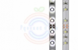 LED лента силикон, 8мм, IP65, SMD 3528, 60 LED/m, 12V, белая