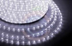 Дюралайт LED (светодиодный), эффект мерцания (2W) - белый Эконом 24 LED/м, бухта 100м